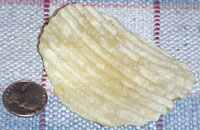 Enormous potato chip from bag of Lance Chip Thunder