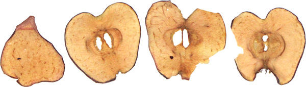 photo of Farmer's Crate Apple Thins